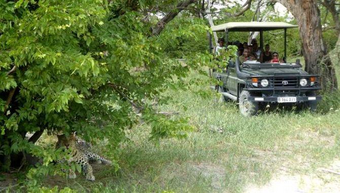 Essentiel Botswana safari