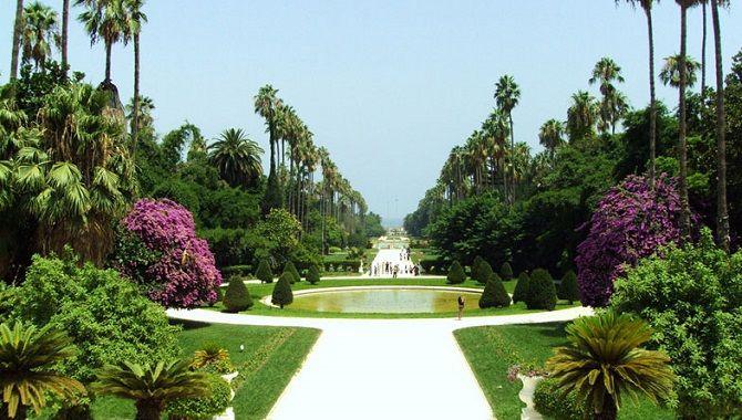 Alger jardin essai