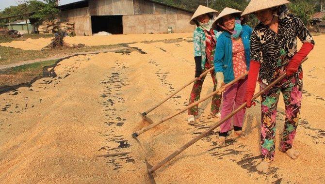 Local Xplorer immersion Vietnam