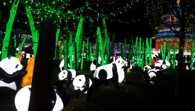 Gaillac lanternes chinoises pandas