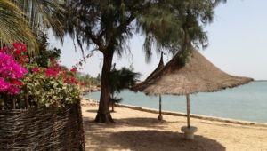 Senegal plage et fleurs