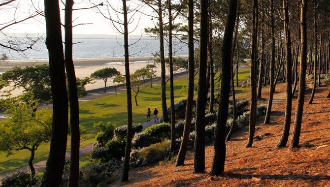 Arcachon Office de tourisme
