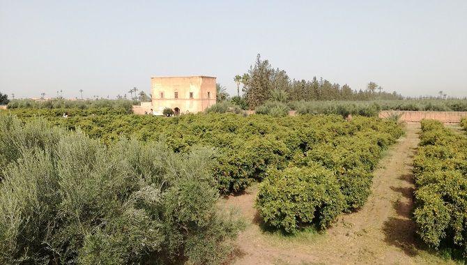 Marrakech jardins Agdal