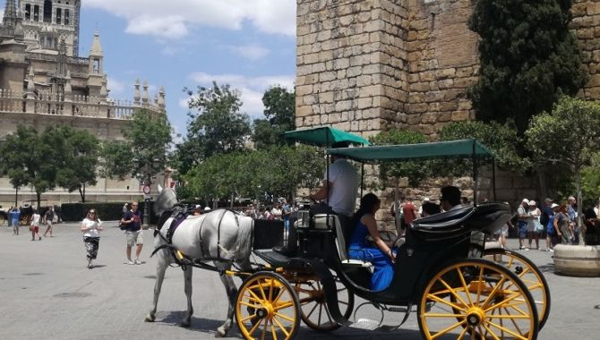Seville caleche